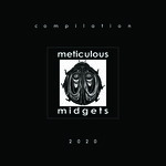 Meticulous Midgets Magazine & compilation 2020 (CD)